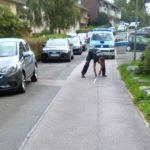 POL-MK: Flucht vor Polizeikontrolle vergebens