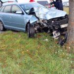 Minden-Lübbecke  POL-MI: Tier ausgewichen: Autofahrerin (19) prallt gegen Baum